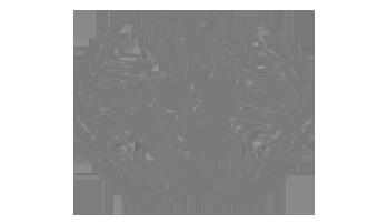 Brain Agent Clients - United Nation logo