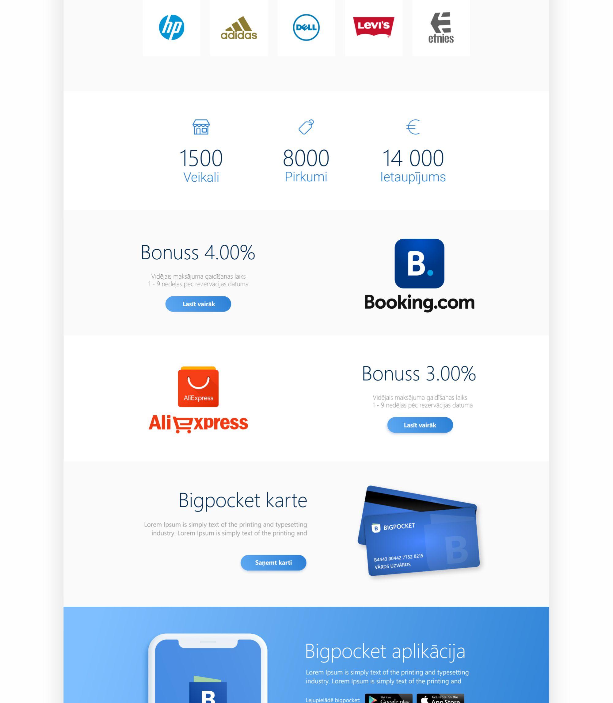 BigPocket website design - portfolio